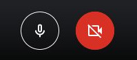 Google Meet - Camera and microphone toggle options